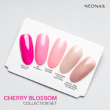 Cherry Blossom Collection Set_