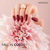 FALL IN COLORS collection_
